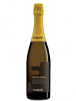 SPUMANTE RIBOLLA FORCHIR 75 cl.